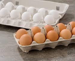 تخم مرغهایی که در یک سبد قرار نگرفتند