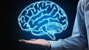 نیمه اهریمنی مغز