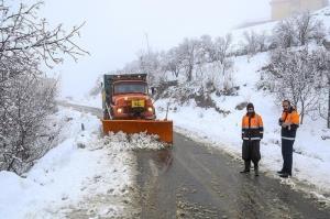 بارش برف راه ارتباطی ۱۹۰ روستای الیگودرز را بست