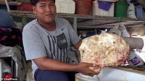 اتفاقی که ماهیگیر تایلندی را یک شبه میلیونر کرد!