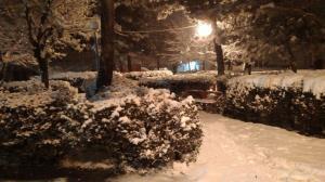 بارش ۱۰ سانتیمتری برف در چلگرد