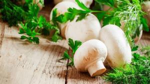 تقویت سیستم ایمنی بدن و کاهش وزن با مصرف قارچ