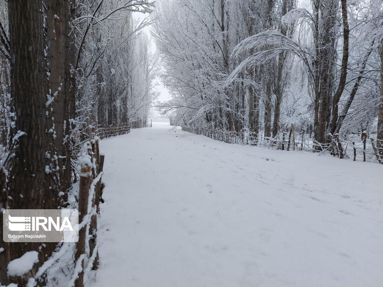 ارتفاع برف در ناوه بجنورد به ۲۰ سانتیمتر رسید