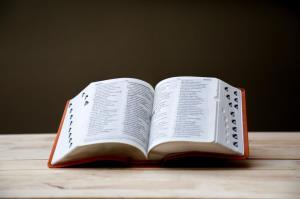 هشدار محققان: زبانهای بومی و اطلاعات ارزشمندشان در حال نابودی هستند