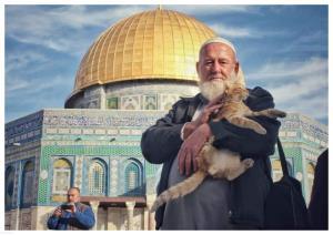 مرگ پیرمردی که به گربههای مسجد الاقصی غذا میداد