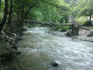 سقوط یک پیرمرد درون رودخانه