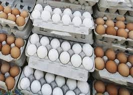 عرضه تخممرغ به قیمت مصوب ۱۷ هزار تومان در اردبیل