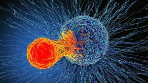 حدود ۴۰ درصد سرطان ها با اصلاح سبک زندگی قابل پیشگیری است