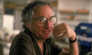 فیلمنامهنویس آمریکایی در ۱۰۱ سالگی درگذشت