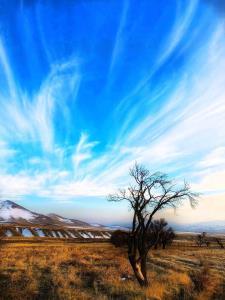 افزایش تدریجی دما تا پایان هفته در زنجان