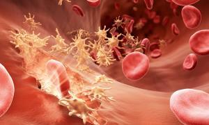 روش های طبیعی برای افزایش پلاکت خون