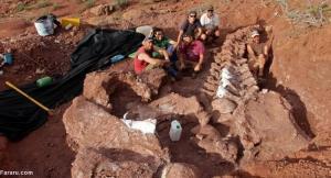 کشف بقایای بزرگترین دایناسور روی زمین
