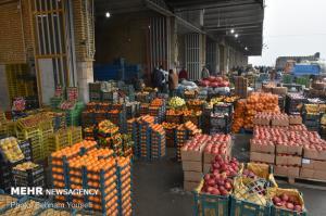 میوه شب عید در چهارمحال و بختیاری ذخیره سازی می شود