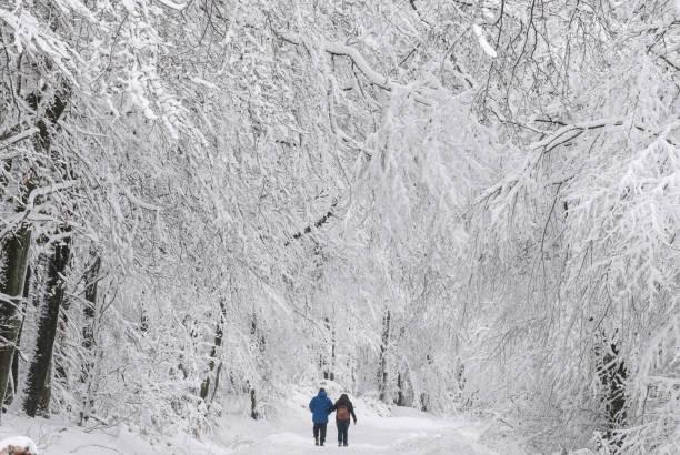 تصاویری دیدنی از بارش برف در آلمان