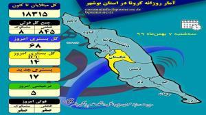 ۲۸۲ مبتلا به کرونا، هفته اول بهمن در بوشهر شناسایی شدند