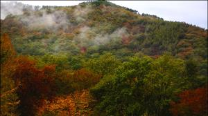 ۵ اثر طبیعی گلستان ملی شد
