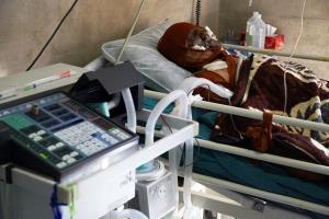 یکی از حادثهدیدگان مدرسه کانکسی دزفول جان باخت