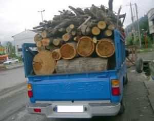 توقیف محموله چوب جنگلی قاچاق در سرخه