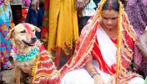 ازدواج با سگ برای فرار از بد یمنی!