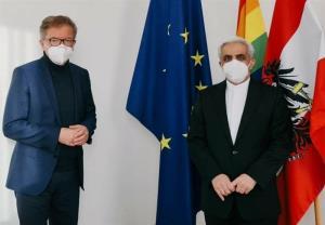 تبادل نظرسفیر ایران با وزیر بهداشت اتریش درخصوص وضعیت کرونا