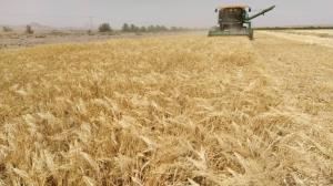۳۵ درصد از اراضی کشاورزی قم واگذار شدهاست