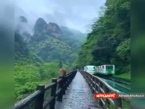 مناظر زیبای پارک ملی چین