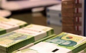 اصلاح آیین نامه اجرایی مربوط به نحوه تسویه بدهیها و مطالبات دولت