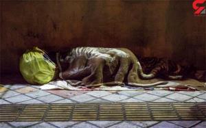 زندگی زیرزمینی زنان کارتن خواب