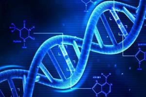 شناسایی و تشخیص نقصهای ژنتیکی با فناوری نوین محققان کشور