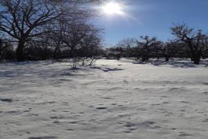برف، باران، باد و کولاک زنجان را فرا میگیرد