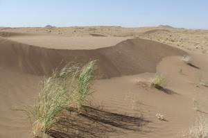 ۲ طرح بیابانزدایی در خوزستان بهرهبرداری شد