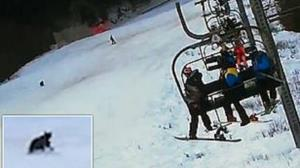 لحظه وحشتناک تعقیب اسکی باز توسط خرس
