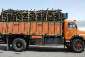 کشف ۸ تن چوب جنگلی قاچاق در سیاهکل