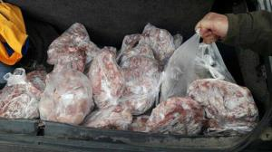 گوشتهای غیر بهداشتی که به سفره مردم نرسید