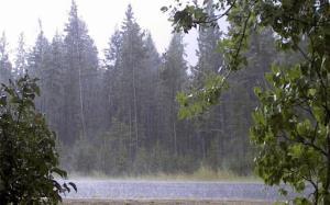 هشدار هواشناسی برای وزش باد شدید و ناپایداری های جوی