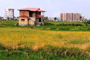 قلع و قمع بیش از ۱۰۰ بنای غیر مجاز در اراضی کشاورزی گیلان