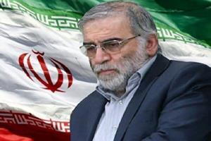نشریه انگلیسی مدعی شد: مشارکت ۲۰ ایرانی و اسرائیلی در ترور شهید فخری زاده