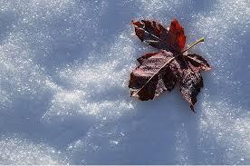 استقرار هوای سرد در چهارمحال و بختیاری
