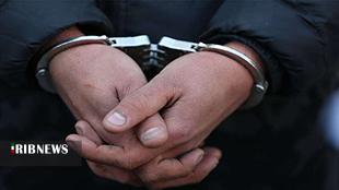 دستگیری عاملان ۱۶ فقره سرقت تا پلمب ۱۰ قلیانسرای متخلف در چهارمحال و بختیاری