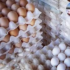 توقیف تخم مرغ غیرمجاز در سربیشه