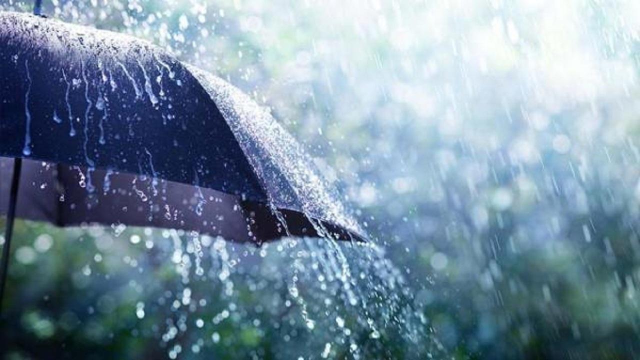 ترنم باران در کرمان