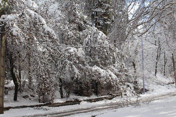 رفت و برگشت هوای برفی در استان گیلان تاپایان هفته