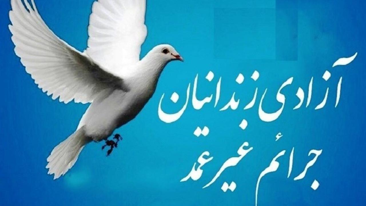 ۱۴ زندانی جرایم غیرعمد در لامرد از بند رهایی یافتند