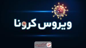 شناسایی ۲۳۸ بیمار جدید مبتلا به کرونا ویروس در استان اصفهان