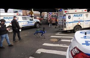 کمک سگ رباتیک به پلیس