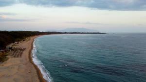کشف موجود سه چشم عجیب در سواحل هند