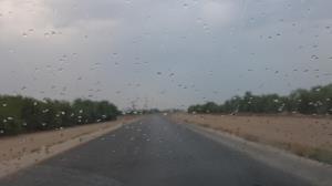 بارندگیها در بوشهر تقویت و فراگیر میشود