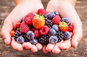 خوراکیهای ایمنی بخش که مانع از تکثیر ویروسها میشوند