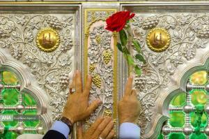 واکنش امام علی(ع) در برابر بدزبانی