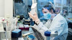 مشاهده گونهای جدید از ویروس کرونا در نیویورک